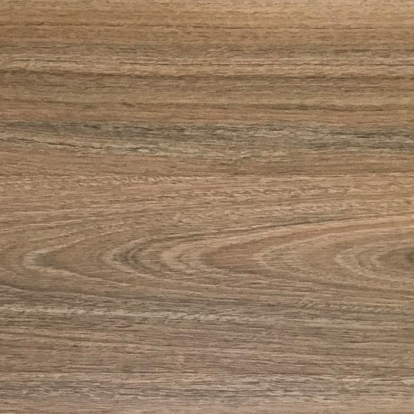 Spotted Gum Swatch